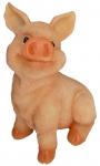 """Schweinchen 'Pinki"""""""